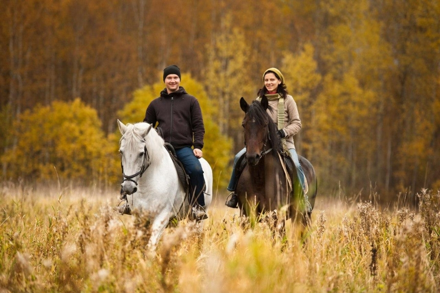 Картинки катание на лошади